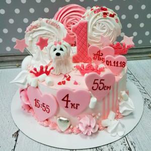 """Торт """"Для годовалой малышки"""" Арт. 00740"""